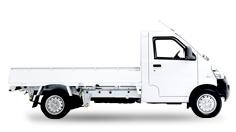 N300® Camión